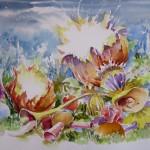 Chou-fleur électrique,web, aquarelle, 32x41cm,2014